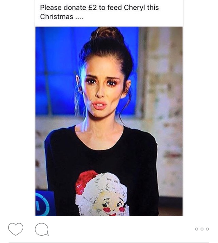An image of Cheryl with the caption 'donate £2 to feed Cheryl this Christmas'